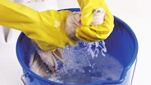 Que faire en cas de d g ts de eaux sbm immobilier - Degat des eaux que faire ...